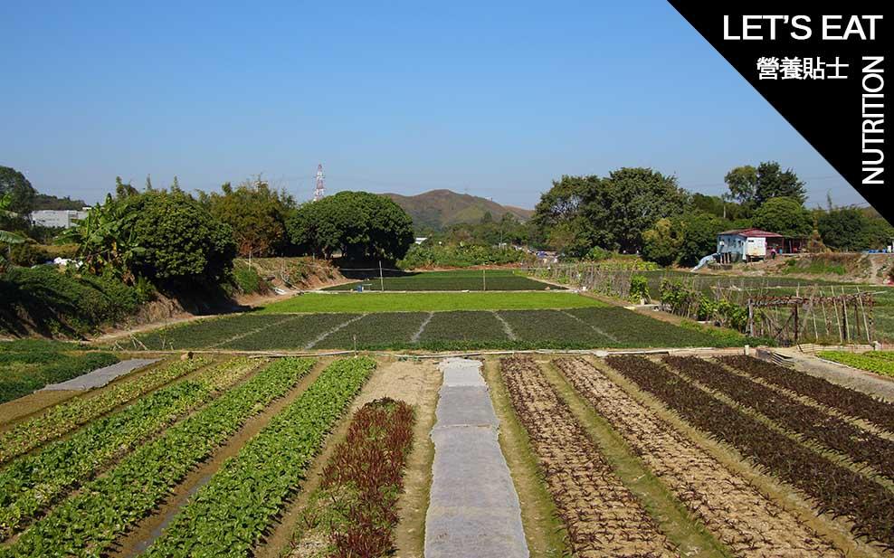 5 farms selling freshly grown food in Hong Kong_