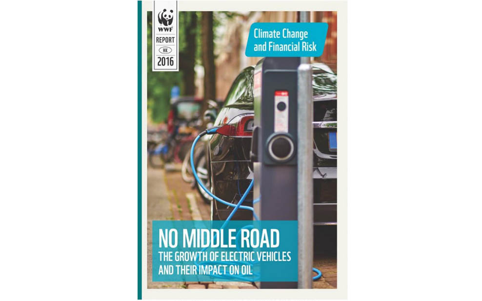 Electric Vehicle Report